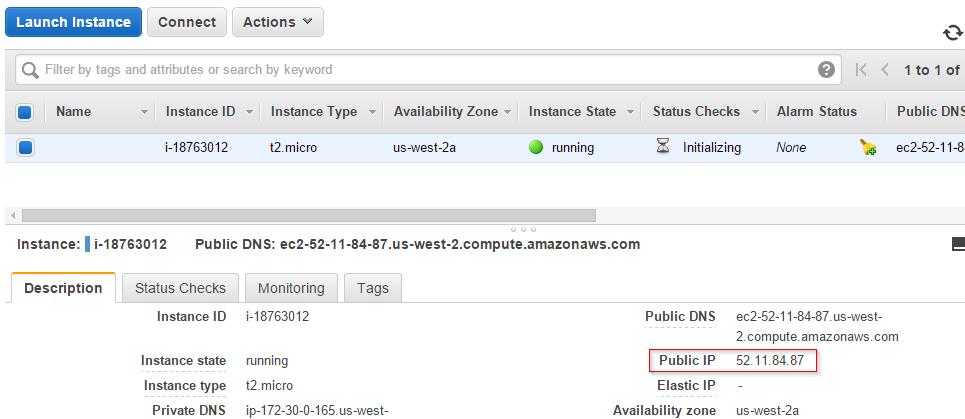 AWS EC2 Instance IP